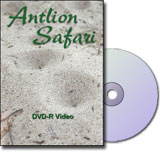 Learn about the Antlion Safari DVD